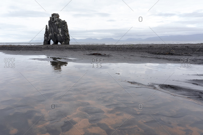 Iceland, Hvitserkur. This sea stack or monolith represents a legend that it was a troll that was turned to stone because it was out during daylight.