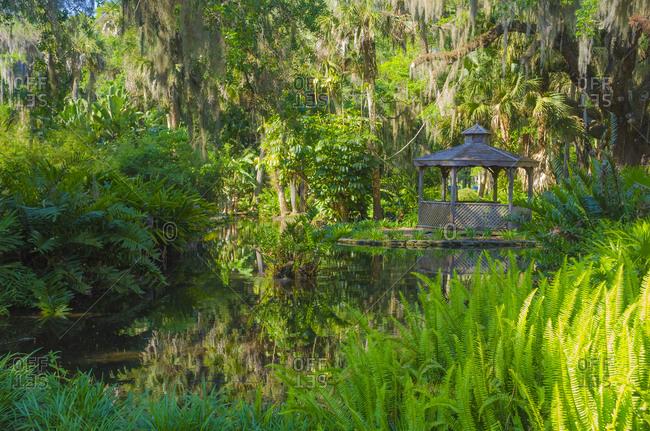 USA, Florida. Washington Oaks Gardens State Park pond.