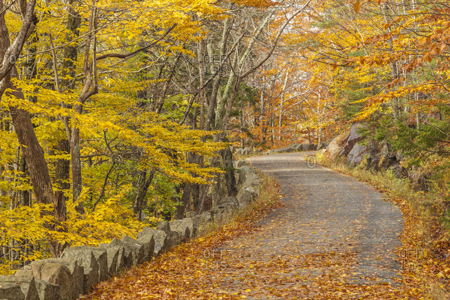 USA, Maine, Mt. Desert Island. Carriage Road in Acadia National Park during autumn.