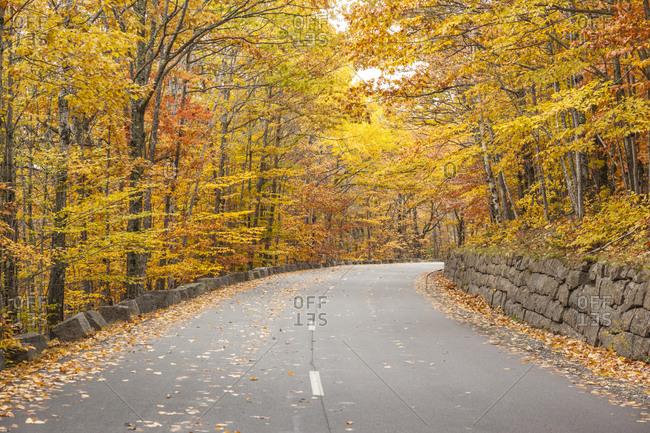 USA, Maine, Mt. Desert Island. Acadia National Park road.