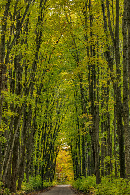Covered road near Houghton in the Upper Peninsula of Michigan, USA