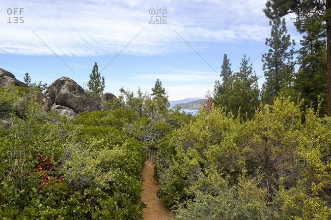 A narrow path at Logan Shoals Vista, Zephyr Cove, Lake Tahoe, Nevada, Usa