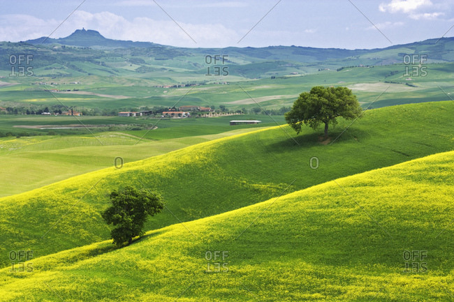 Italy, Tuscany. Hilly landscape.  view of landscape