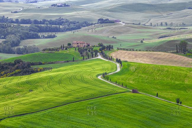 May 22, 2015: Europe, Italy, Tuscany, Val d'Orcia. Farm landscape.
