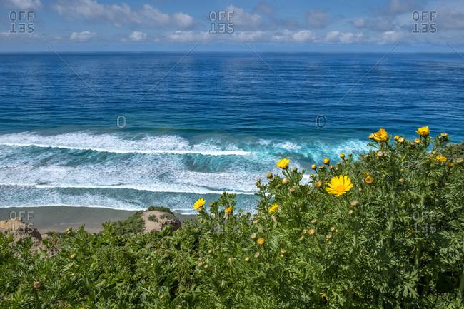 Black's Beach, La Jolla, San Diego, California, USA.