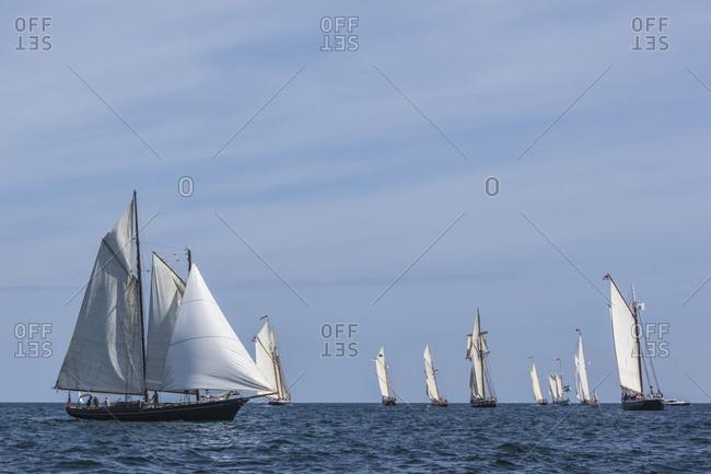 USA, Massachusetts, Cape Ann, Gloucester. Gloucester Schooner Festival, schooner parade of sail.