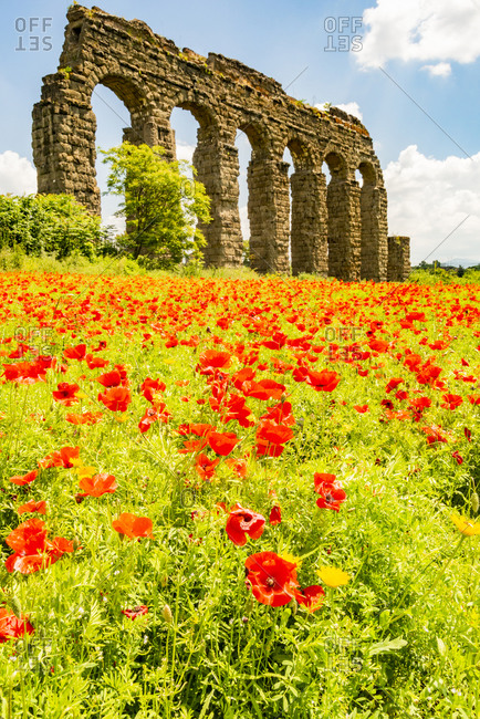 Italy, Rome. Parco Regionale dell'Appia, Antica, Park of the Aqueducts (Parco degli Acquedotti), Aqua Claudio seen from Appio Claudio Tennis Club, wild red poppies in foreground.