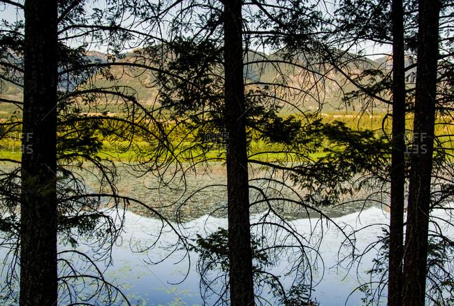 Canada, British Columbia. View across Columbia Wetlands at sunset.