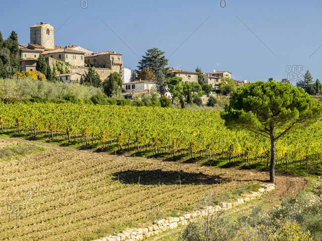 Europe, Italy, Chianti. Tuscan homes in the town of Panzano with vineyard below.