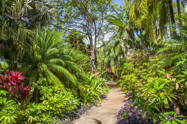 USA, Hawaii, Kauai Allerton Gardens Poipu
