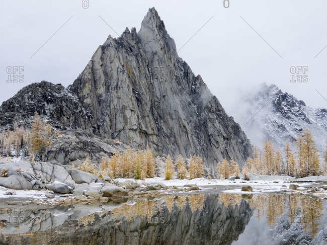 USA, Washington State. Alpine Lakes Wilderness, Enchantment Lakes, Prusik Peak, snow covered Larch trees reflected in Gnome Tarn