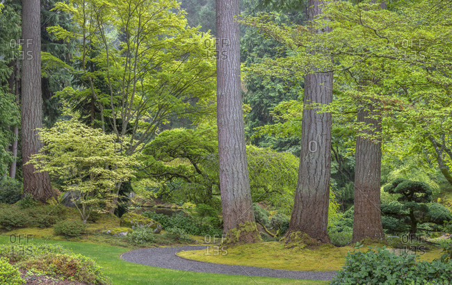 USA, Washington State, Bainbridge Island. Garden path composite panoramic.