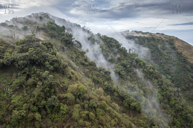 Africa, Kenya, Ngong Hills Nature Reserve, Aerial view of forest-covered slopes of Ngong Hills outside Nairobi