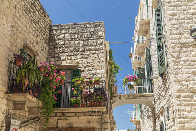 Italy, Apulia, Metropolitan City of Bari, Molfetta. Balconies and a small bridge between buildings.