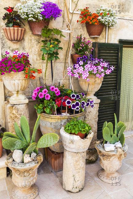 Italy, Apulia, Metropolitan City of Bari, Monopoli. Flowers in planters outside a stone building.