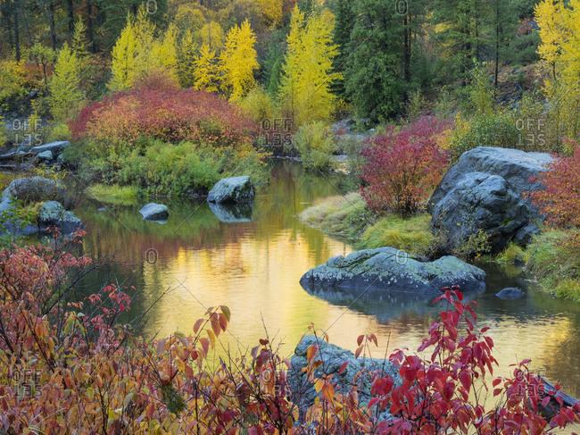 WA, Tumwater Canyon, Autumn reflection