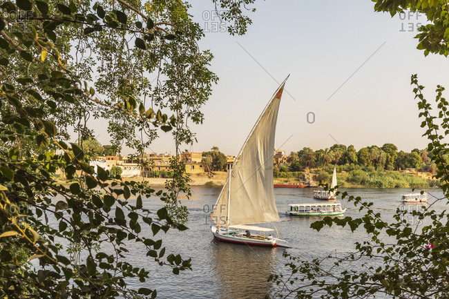 Africa, Egypt, Aswan. September 20, 2018. A felucca, a traditional wooden sailing boat, on the Nile River