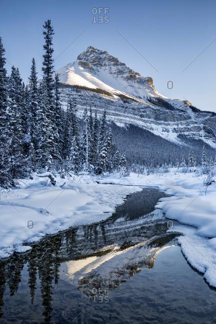 Canada, Alberta, Jasper National Park, Tangle Peak reflected in Beauty Creek