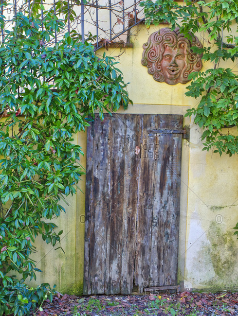 Europe, Italy, Chianti. Old wooden door beneath a stairway with climbing vines and pottery art work.