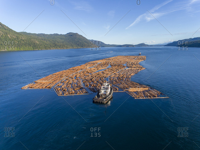 August 4, 2018: Canada, British Columbia, Campbell River, Aerial view of tugboat pushing boom of freshly cut logs toward Seymour Narrows along Vancouver Island on summer evening