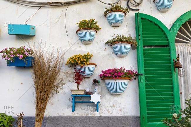 Italy, Apulia, Metropolitan City of Bari, Bari. Potted flowers on a stucco wall.