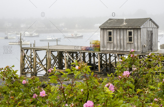 USA, Maine. Bernard fishing village, Mount Desert Island, Maine, USA.