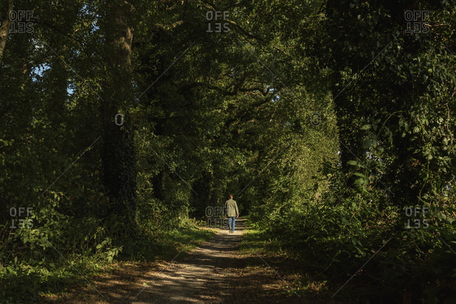 Rear view of woman walking on path in the woods