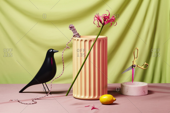 Flower, bird and lemon on pastel background with other objects