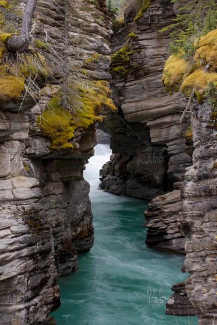Canada, Alberta. Athabasca Falls detail, Jasper National Park.
