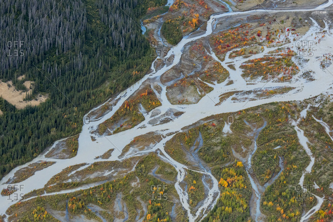Canada, Yukon, Kluane National Park, aerial of braided river and fall color.