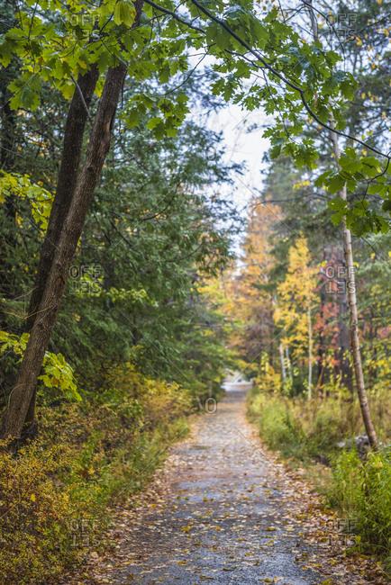 USA, Maine, Mt. Desert Island. Bar Harbor, Shore Path with autumn foliage.