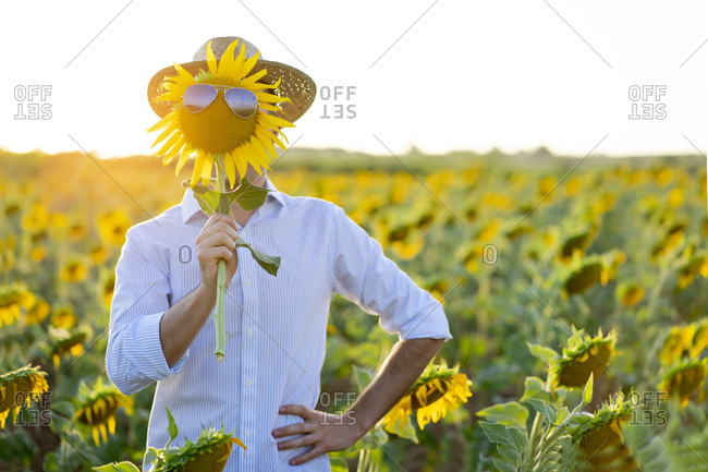 Young man holding sunflower with sunglasses in front of face while standing in farm at sunset