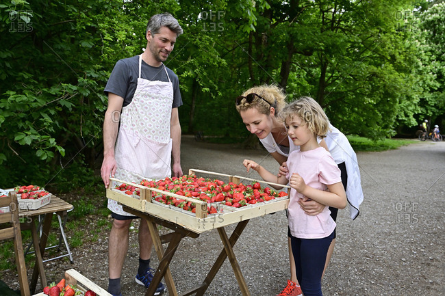 Male vendor looking at woman with daughter choosing strawberries at market stall