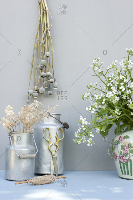 Dried poppy buds- milk canisters- string- scissors and blooming flowers