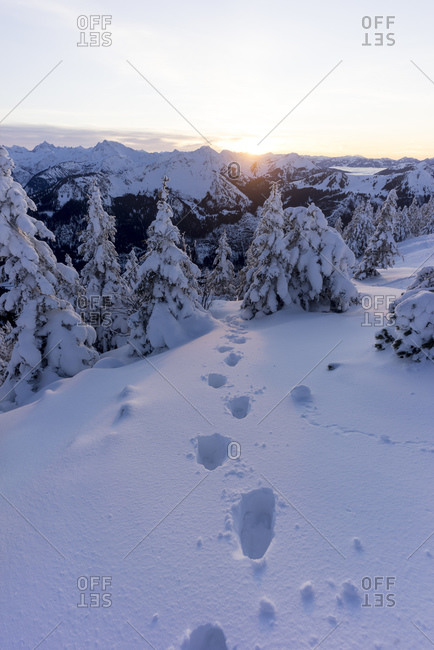 Footprints in snow at sunset