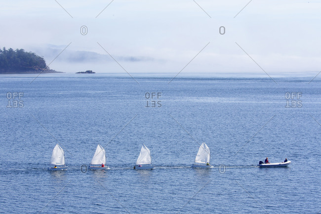 Sailing lessons for children at Sidney harbor with morning fog in the background, Victoria, British Columbia, Canada