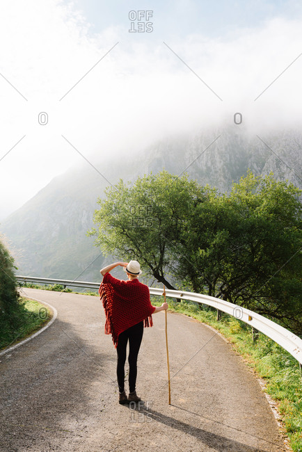 Back view of unrecognizable tourist with wooden stick standing on asphalt road and admiring amazing view of mountains on sunny day