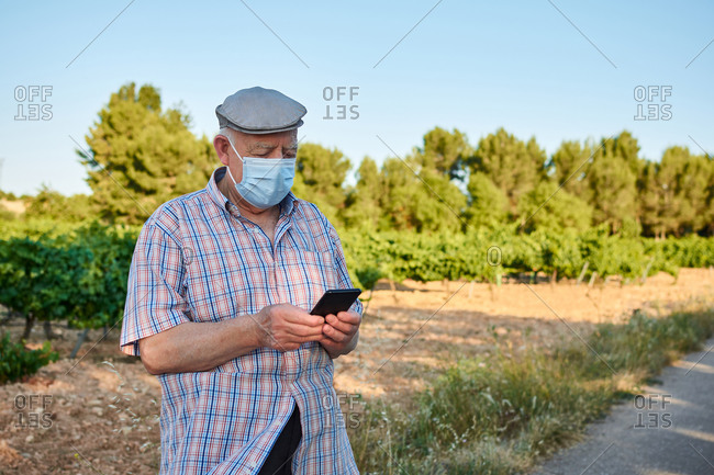 Senior male in protective mask standing on rural road and reading message on mobile phone in summer day
