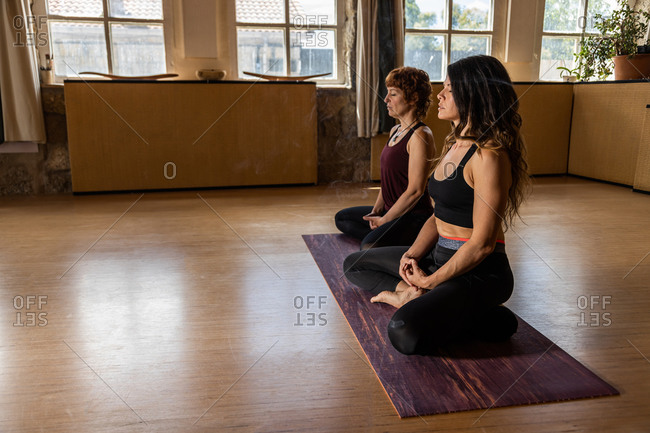 Side view of tranquil females sitting in Lotus pose on mats in studio with aroma stick and doing yoga while practicing mindfulness together