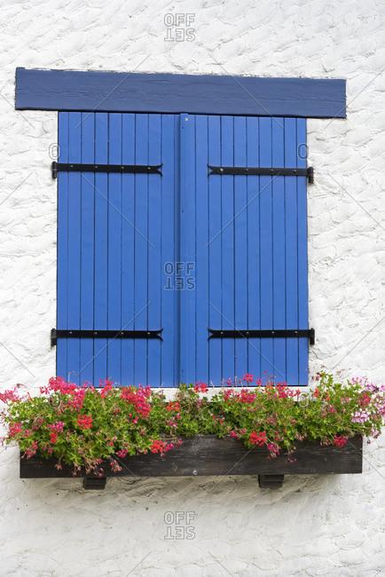 Blue shutters on a window