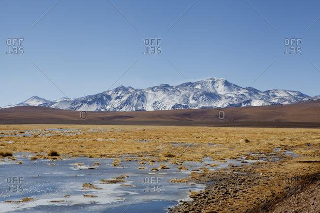 Altiplano, High Plateau, San Pedro de Atacama, Antofagasta, Chile