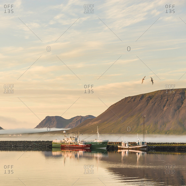 Moored fishing boats and birds flying over misty mountains, Grundarfjordur, Snaefellsnes peninsula, Iceland