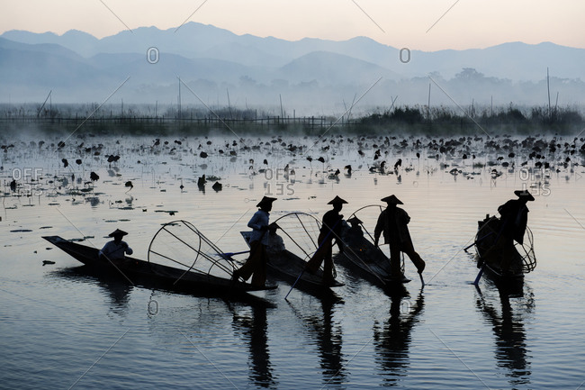 Fishermen fishing by traditional fishing techniques at dusk, Inle lake, Shan State, Myanmar