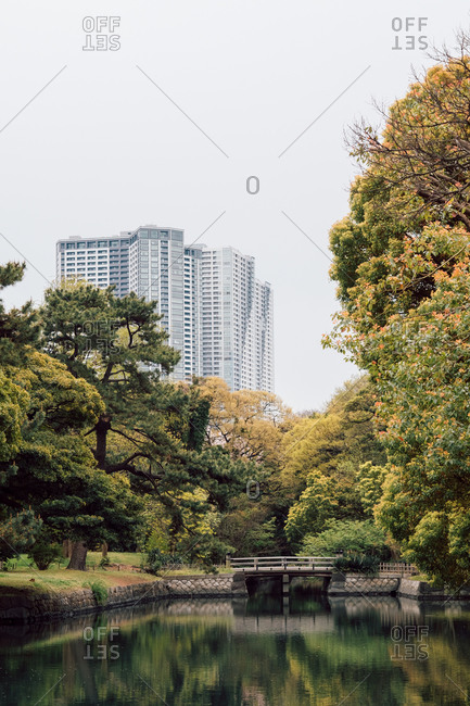 Serene scene of lake with high-rise buildings in background, Tokyo, Japan