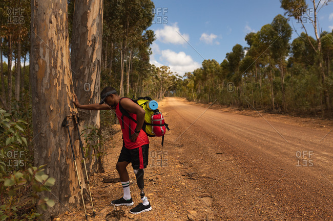 A fit, disabled mixed race male athlete with prosthetic leg, enjoying his time on a trip, hiking, leaning on a tree on a dirt road in a forest. Active lifestyle with disability.