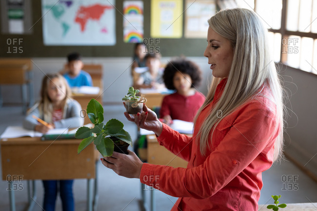 Female Caucasian teacher showing a plant pot to group of multi ethnic kids in class at school. Primary education social distancing health safety during Covid19 Coronavirus pandemic.