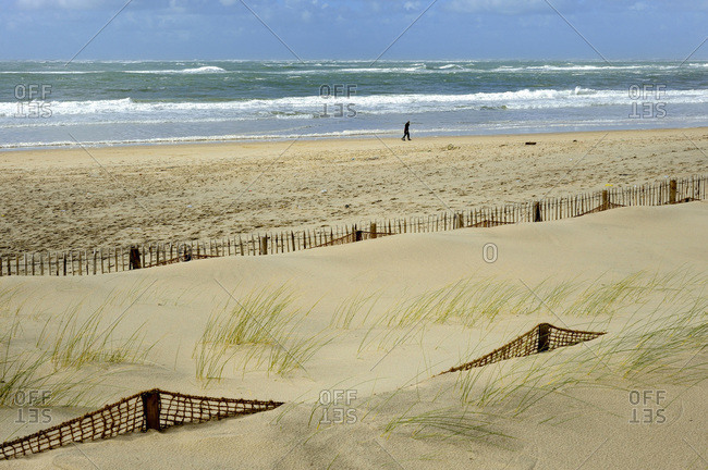 France, South-Western France, Arcachon Bay, protection against the encroachment of sand