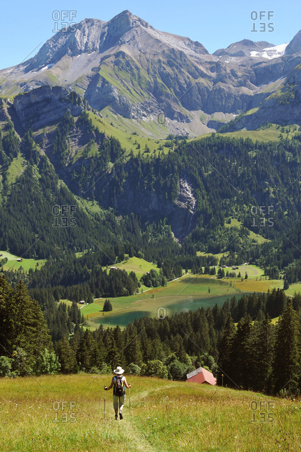 Switzerland, Bern canton, Hight-Simmental region, Pastures on Wispile, hiking to Lauenen valley and lake,