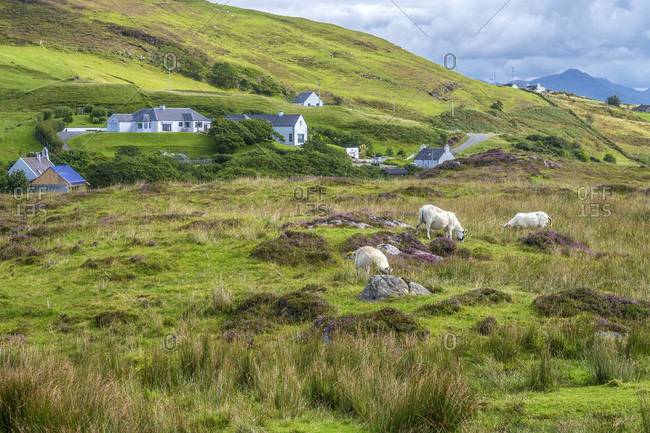Europe, Great Britain, Scotland, Hebrides, south-east of the Isle of Skye, Point of Sleat, farms and ships in the moor