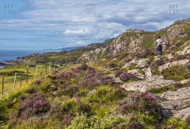 Europe, Great Britain, Scotland, Hebrides, south-east of the Isle of Skye, walker in the moor at Point of Sleat